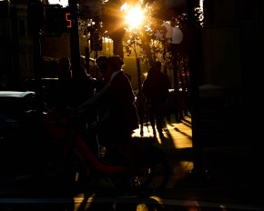 Light leaks through the trees at Ghirardelli Square in San Francisco on Thursday, Oct. 18, 2018. (Randy Vazquez/Bay Area News Group)
